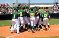 LCM Battlin' Bear Baseball