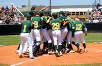 LCM Battlin' Bear Baseball